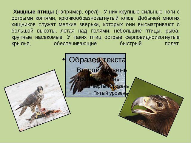 Хищные птицы (например, орёл) . У них крупные сильные ноги с острыми когтями...