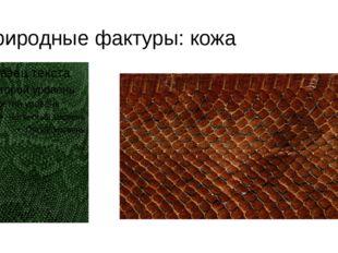 Природные фактуры: кожа