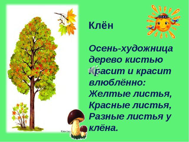 Осень-художница дерево кистью Красит и красит влюблённо: Желтые листья, Красн...