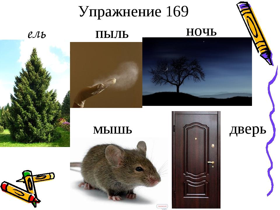 Упражнение 169 ель пыль ночь мышь дверь