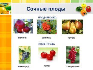 Сочные плоды Text Text Txt ПЛОД- ЯБЛОКО ПЛОД- ЯГОДА смородина томат виноград