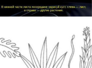 В нижней части листа посередине нарисуй куст, слева — лист, а справа — другие