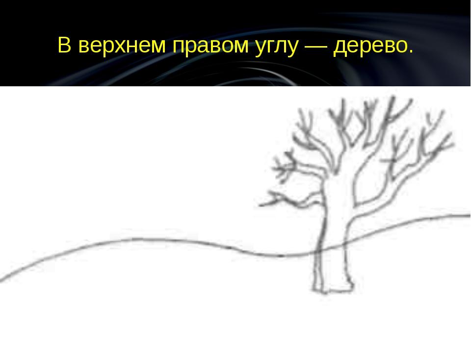 В верхнем правом углу — дерево.