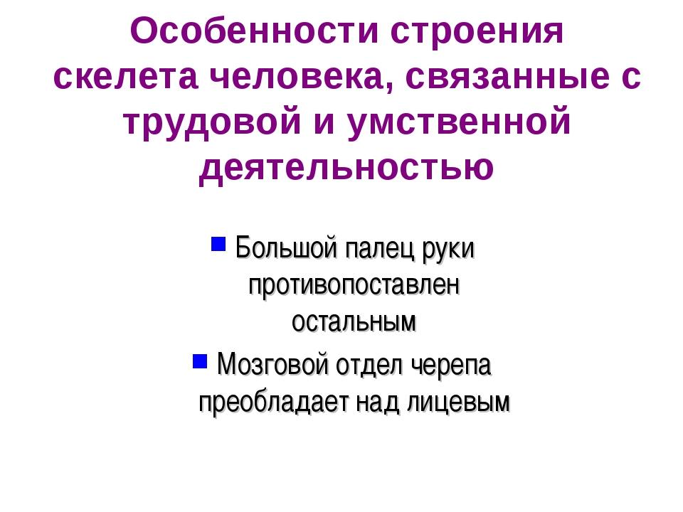 Особенности строения скелета человека, связанные с трудовой и умственной деят...