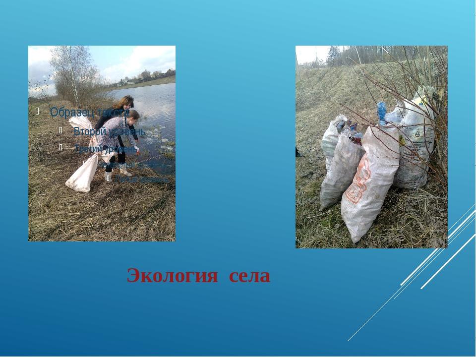 Экология села