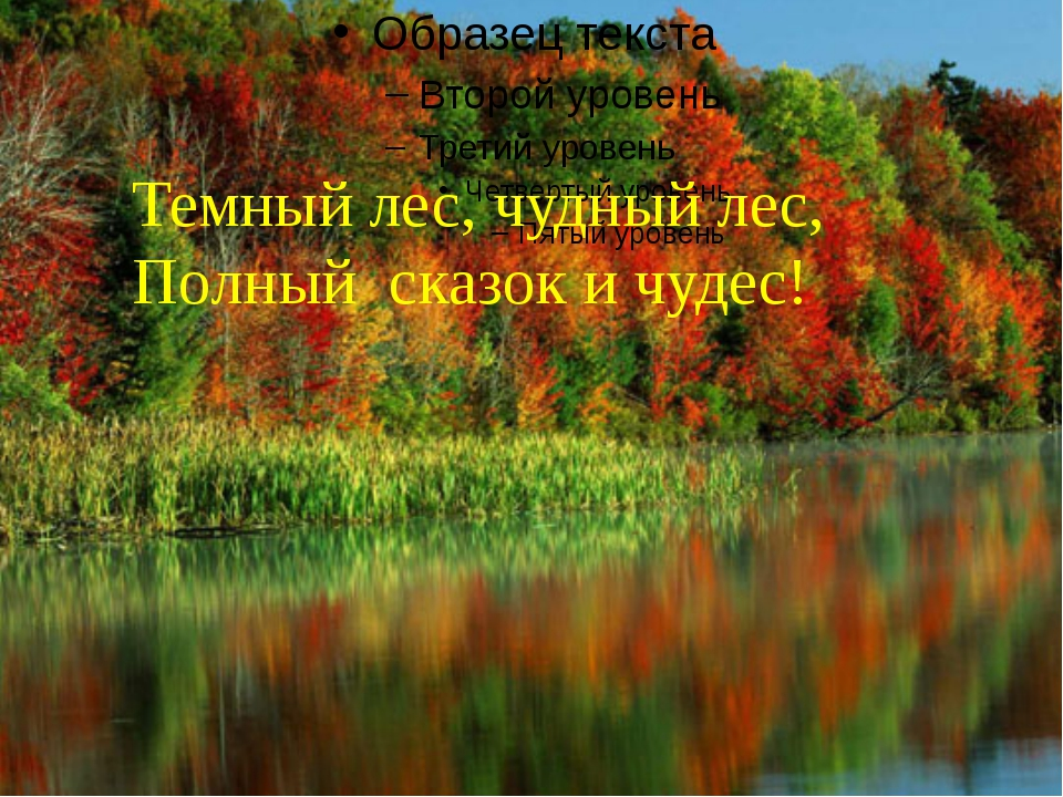 Темный лес, чудный лес, Полный сказок и чудес!
