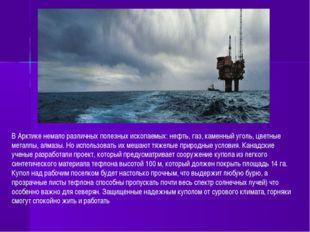 В Арктике немало различных полезных ископаемых: нефть, газ, каменный уголь, ц