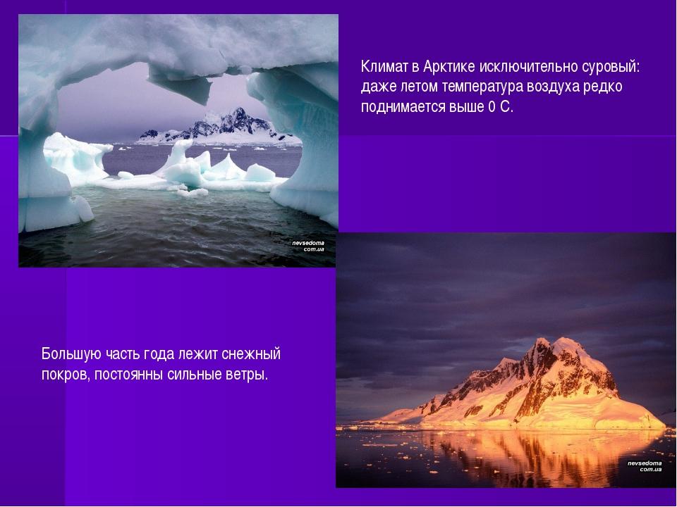 Климат в Арктике исключительно суровый: даже летом температура воздуха редко...