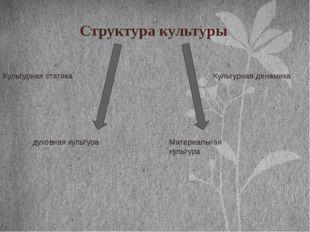 Структура культуры Культурная статика Культурная динамика Материальная культу