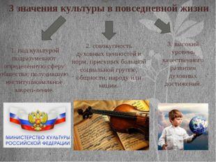 3 значения культуры в повседневной жизни 1. под культурой подразумевают опред