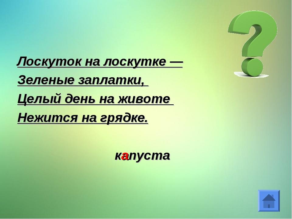 Лоскуток на лоскутке — Зеленые заплатки, Целый день на животе Нежится на гряд...
