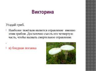 Викторина Угадай гриб. Наиболее тяжёлым является отравление именно этим гриб