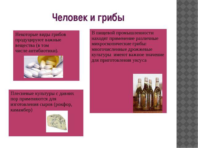 Человек и грибы В пищевой промышленности находят применение различные микроск...