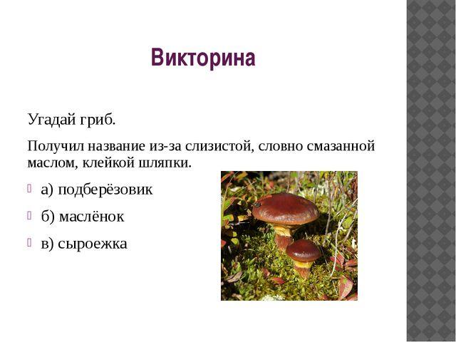 Викторина Угадай гриб. Получил название из-за слизистой, словно смазанной мас...