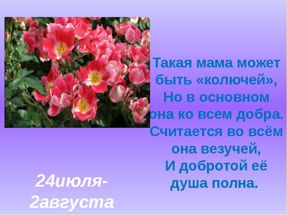 Такая мама может быть «колючей», Но в основном она ко всем добра. Считается...