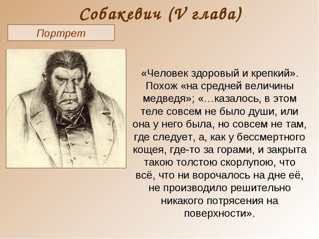 Собакевич (V глава) Портрет «Человек здоровый и крепкий». Похож «на средней в...