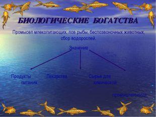 БИОЛОГИЧЕСКИЕ БОГАТСТВА Промысел млекопитающих, лов рыбы, беспозвоночных живо