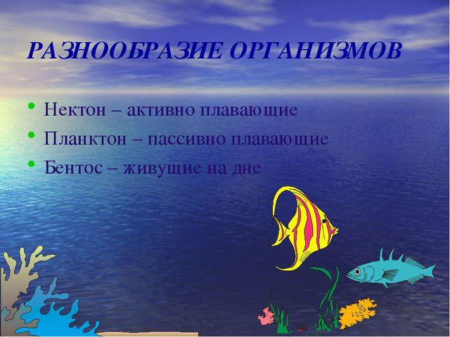 РАЗНООБРАЗИЕ ОРГАНИЗМОВ Нектон – активно плавающие Планктон – пассивно плаваю...