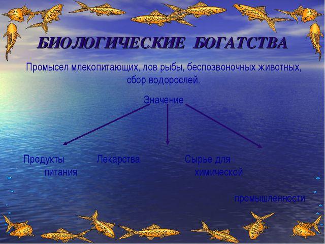 БИОЛОГИЧЕСКИЕ БОГАТСТВА Промысел млекопитающих, лов рыбы, беспозвоночных живо...