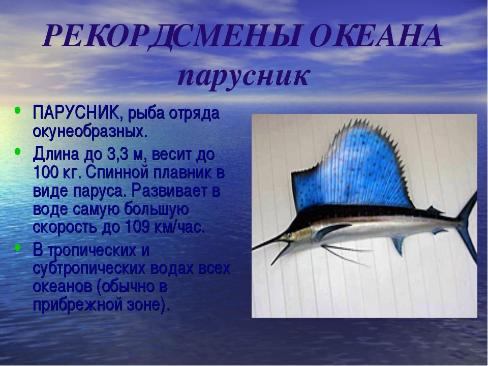 РЕКОРДСМЕНЫ ОКЕАНА парусник ПАРУСНИК, рыба отряда окунеобразных. Длина до 3,3...