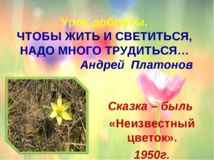 Урок доброты. ЧТОБЫ ЖИТЬ И СВЕТИТЬСЯ, НАДО МНОГО ТРУДИТЬСЯ… Андрей Платоно