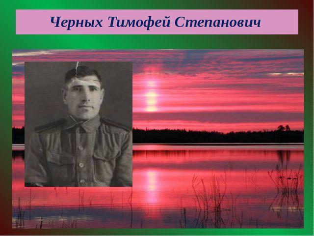 Черных Тимофей Степанович
