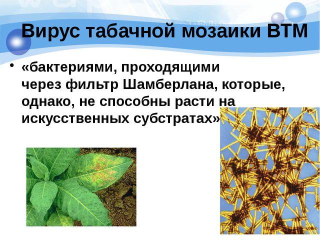 Вирус табачной мозаики ВТМ «бактериями, проходящими черезфильтр Шамберлана,...