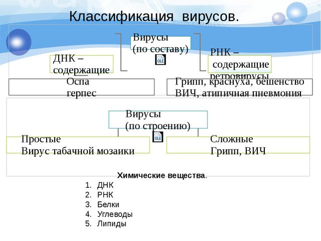 Классификация вирусов. Химические вещества. ДНК РНК Белки Углеводы Липиды