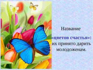 Название «цветов счастья»: их принято дарить молодоженам.