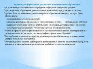 Условия для эффективной реализации дистанционного образования Для успешной ре
