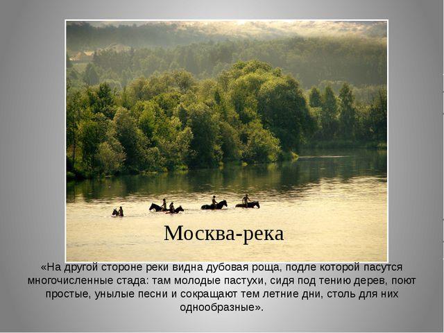 Москва-река «На другой стороне реки видна дубовая роща, подле которой пасутся...
