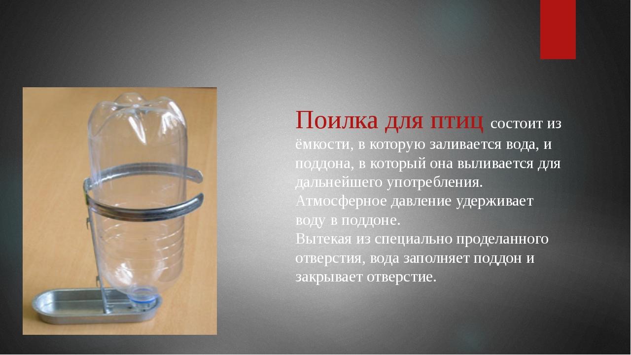 Поилка для птиц состоит из ёмкости, в которую заливается вода, и поддона, в к...