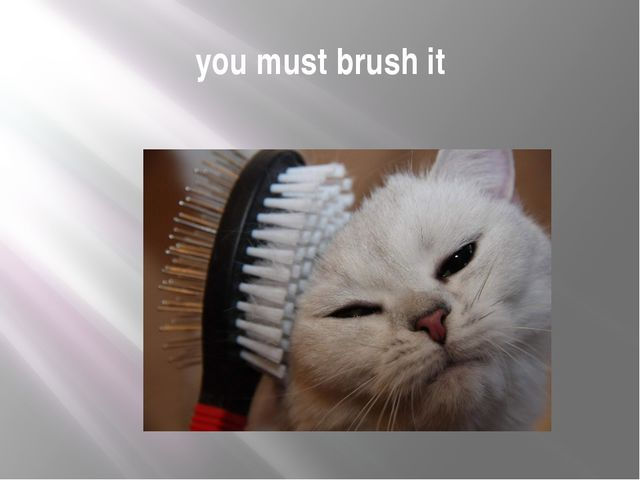 you must brush it