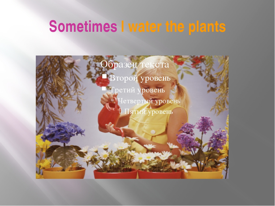 Sometimes I water the plants