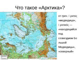 Что такое «Арктика»? отгреч.ἄρκτος «медведица», ἀρκτικός— «находящийся п