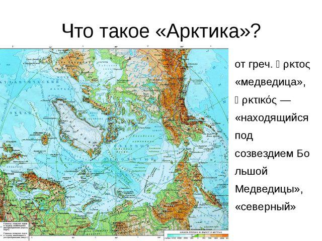 Что такое «Арктика»? отгреч.ἄρκτος «медведица», ἀρκτικός— «находящийся п...