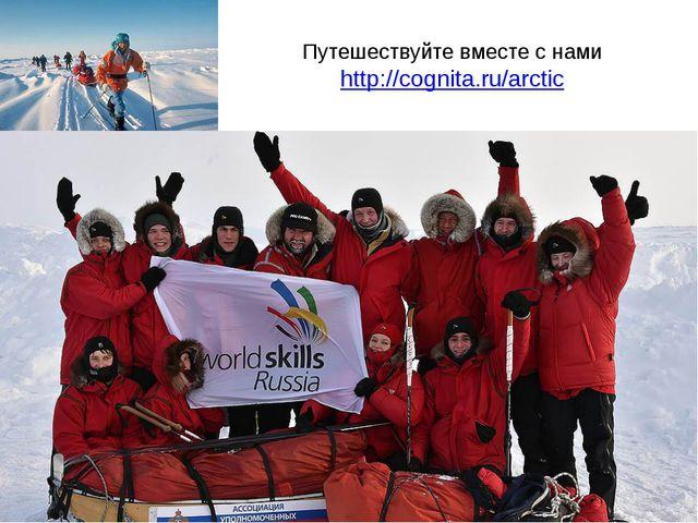 Путешествуйте вместе с нами http://cognita.ru/arctic