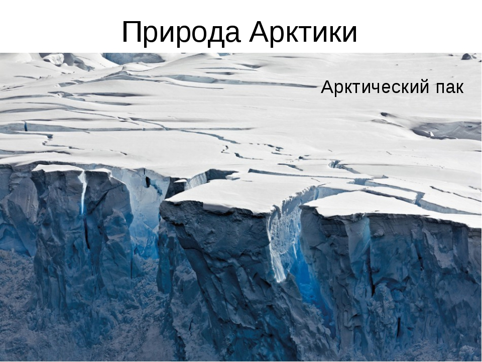 Природа Арктики Полынья Торосы Арктический пак