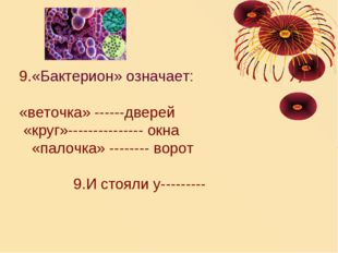 9.«Бактерион» означает: «веточка» ------дверей «круг»--------------- окна «па