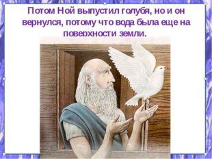 Потом Ной выпустил голубя, но и он вернулся, потому что вода была еще на пове