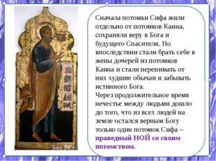 Сначала потомки Сифа жили отдельно от потомков Каина, сохраняли веру в Бога и