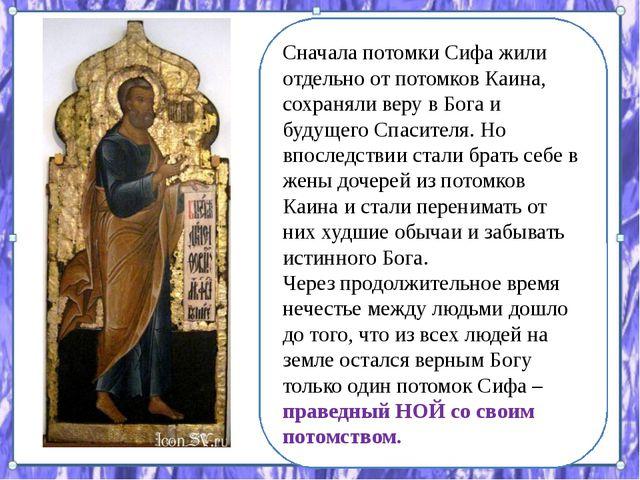 Сначала потомки Сифа жили отдельно от потомков Каина, сохраняли веру в Бога и...
