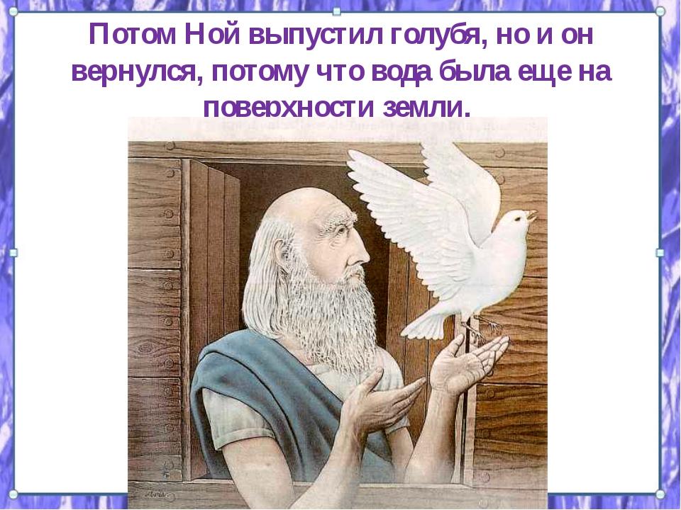 Потом Ной выпустил голубя, но и он вернулся, потому что вода была еще на пове...