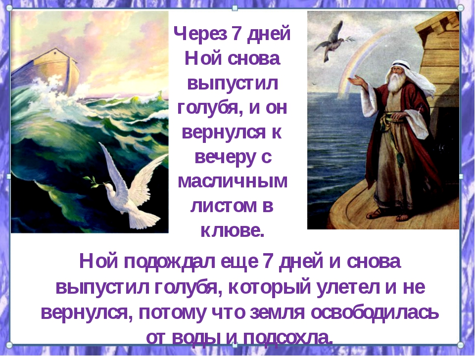 Через 7 дней Ной снова выпустил голубя, и он вернулся к вечеру с масличным ли...