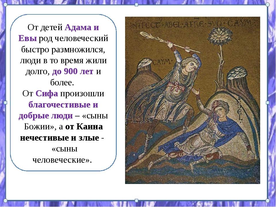 От детей Адама и Евы род человеческий быстро размножился, люди в то время жил...