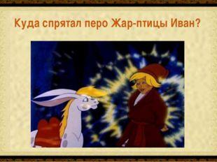 Завернул в тряпицу и в шапку спрятал Куда спрятал перо Жар-птицы Иван?