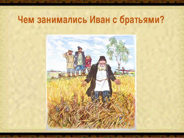 Чем занимались Иван с братьями? Сеяли и продавали пшеницу