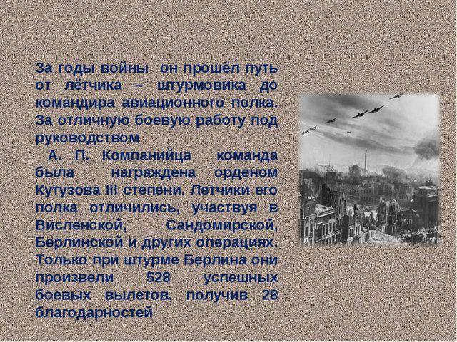 За годы войны он прошёл путь от лётчика – штурмовика до командира авиационног...
