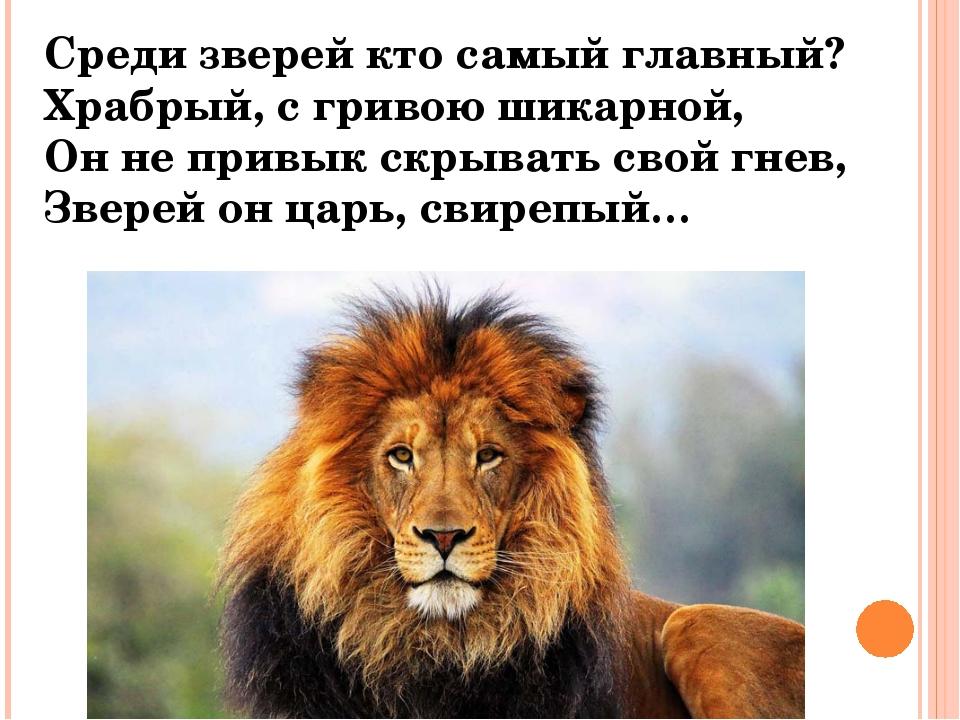 Среди зверей кто самый главный? Храбрый, с гривою шикарной, Он не привык скры...