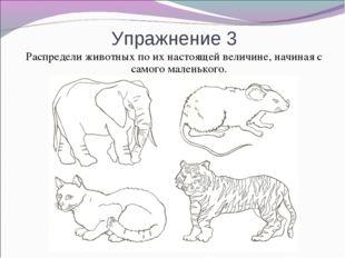 Упражнение 3 Распредели животных по их настоящей величине, начиная с самого м